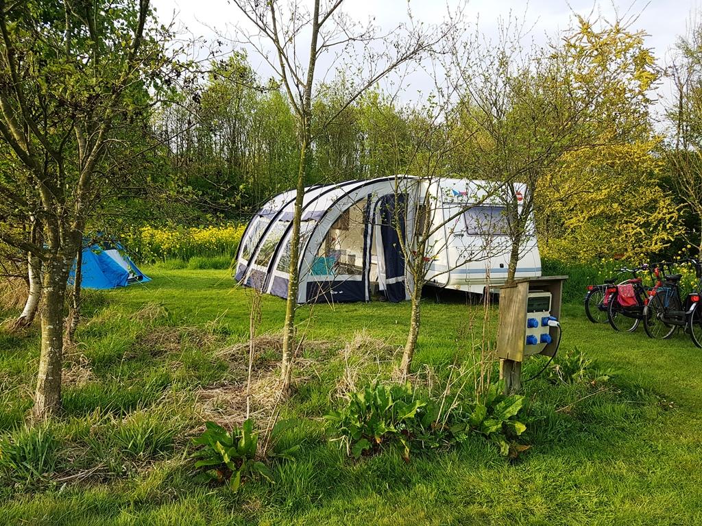 camping Delflandhoeve