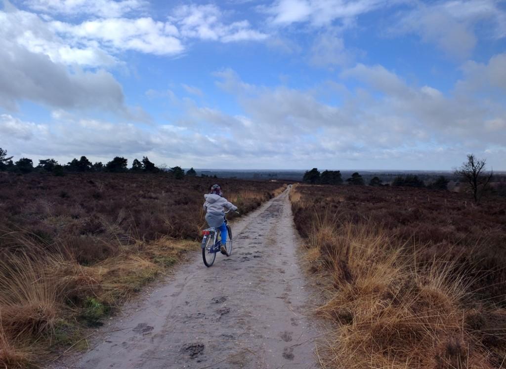 fietsen sallandse heuvelrug
