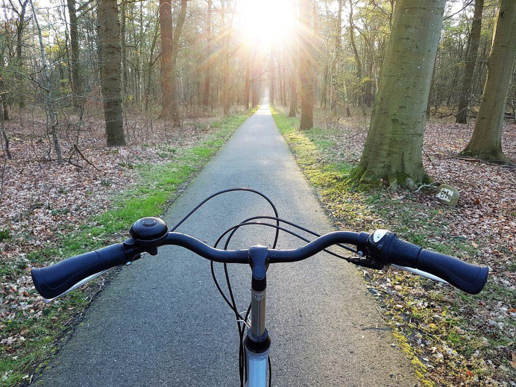 fietsen landal land van bartje