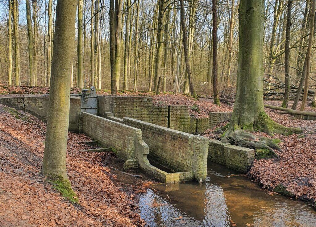 wandelen in het waterloopbos